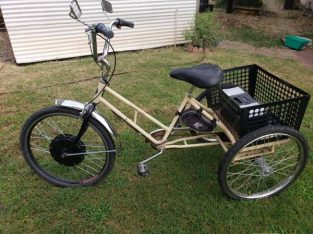 Worksman electric trike $500 obo